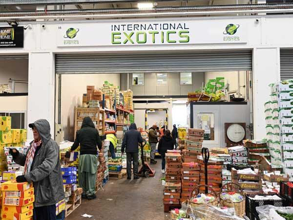 International Exotics