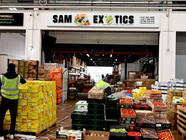 Sam Exotics
